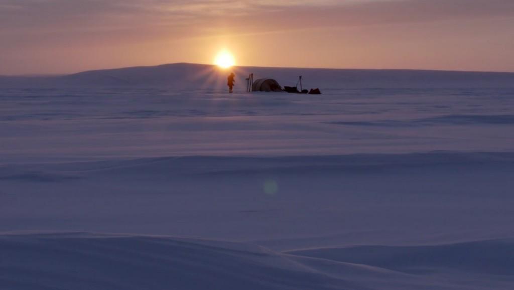 arctique-vincent-munier-1