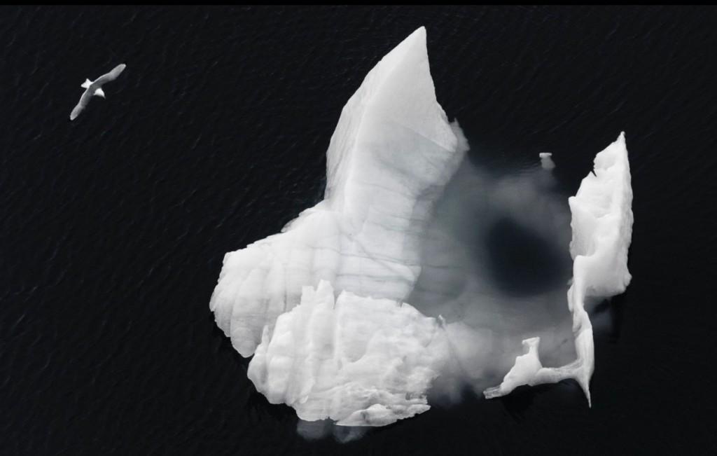 arctique-vincent-munier