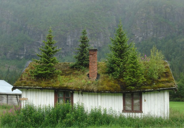 Sacandinavian_houses-7